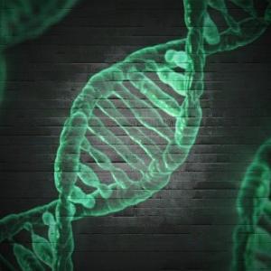 中国共産党、世界最大のDNAデータベースを構築。使用用途が怖すぎる。
