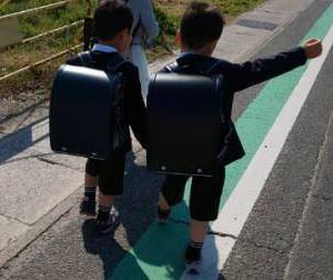 【自閉症児の進学先】特別支援学校か地元支援学校(支援級)か