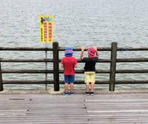 自閉症児の支援方法は?家庭と学校と福祉の連携