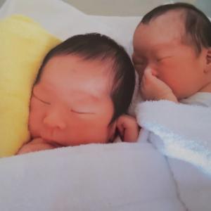 双子妊娠ブログ|予定日過ぎても産まれてこない?二卵生双生児レポ!