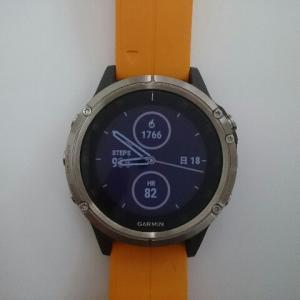 fēnix 5 Plus Sapphire Ti Gray