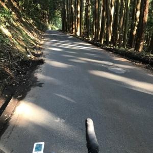 本当に暑い、昼間は無理!あいかわらず信楽バイク