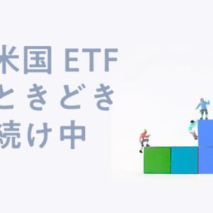 気まぐれ投資日記。2020年の米国ETFの保有銘柄とポートフォリオ。