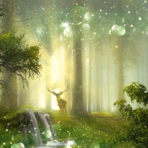 不思議の書物、聖なる予言シリーズ、読んで学べたこと。