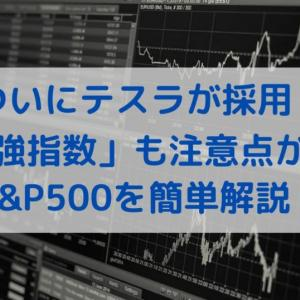 【祝!テスラ採用】「最強指数」も注意点が…?S&P500を簡単解説!