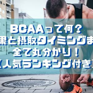 BCAAって何?効果と摂取タイミングまで全て丸分かり!【人気ランキング付き】