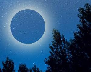 明日、「新月」なんですって