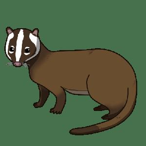 野生動物のフィールドサイン ~ウンチ編~ その2