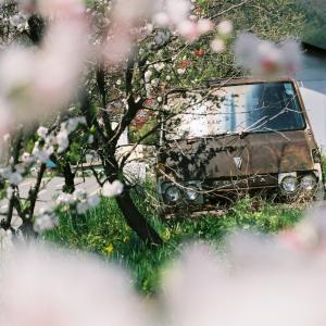 フィルムカメラで撮る「廃車」