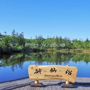 神仙沼|ニセコの神秘の散策スポット。見頃の時期とルートガイド