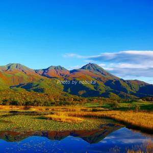 世界自然遺産登録地の知床五湖周辺を守った「しれとこ100平方メートル運動」