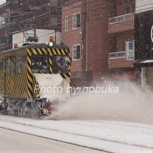 札幌市電「ササラ電車」の秘密。いつ運行?どんな電車?詳しく解説