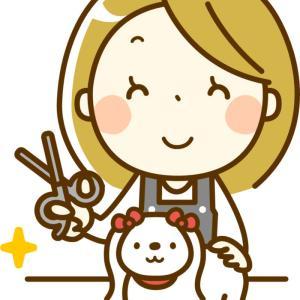 犬の美容室「美容室あべる」がオープン【江別市大麻東町】