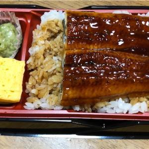 はま寿司のうな重、父子帰省