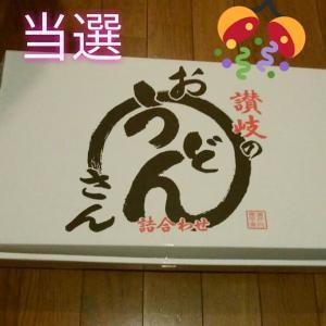 【懸賞当選】せい麺やの讃岐うどん