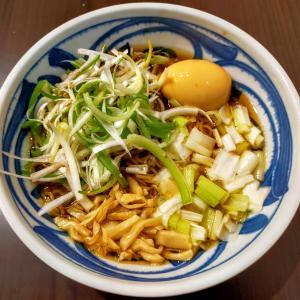 いの麺🍜11発目✨Wネギ中華そば