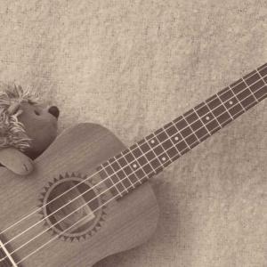 ヘタでもいいから楽器が弾きたい
