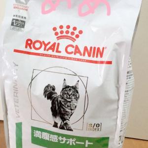 まとめ買いその②!!猫編