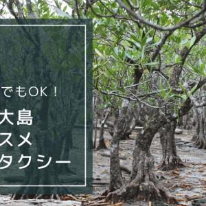 【奄美大島でおすすめの観光タクシー】車なしでもOKのおすすめ交通手段