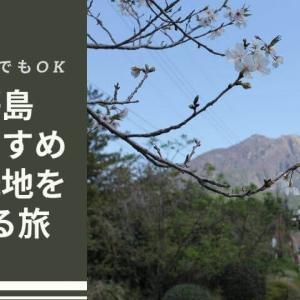 【車なしでもOK】桜島のおすすめ観光地をバスで巡る旅 〜桜島観光ブログ〜