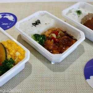 ANA機内食レビュー 通販でお取り寄せしたANA機内食の実食レポート
