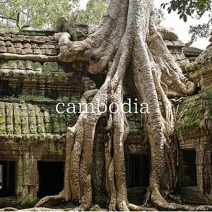 2005年の【カンボジア】の思い出を振り返る【タ・プローム】