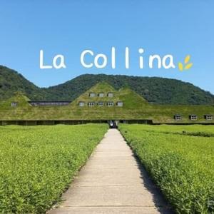 緑溢れる『ラ・コリーナ近江八幡』にバームクーヘンなど美味しいスイーツに逢いに行く!