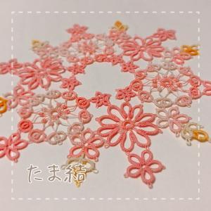 サーモンピンクの窓飾り。それとブログ名変更