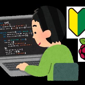 プログラミング初心者にラズパイの購入をオススメする3つの理由を解説します