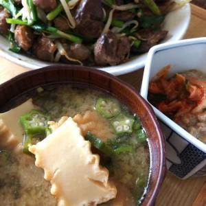レバニラとめかぶオクラキムチ納豆味噌汁の発酵食品祭りで夏バテ知らず