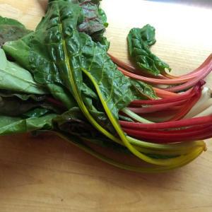 スイスチャードというパリピ野菜