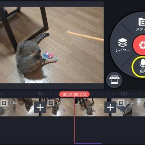 【2020年版】動画編集アプリキネマスターで音声を録音する方法