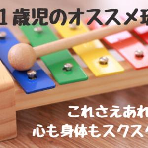 19時間目・0~1歳児のオススメ玩具