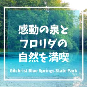 青く透んだ感動の泉 Gilchrist Blue Springs State Park   フロリダ観光おすすめ【アメリカキャンプレビュー】