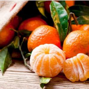 タンジェリン精油と柑橘系精油について話した夜