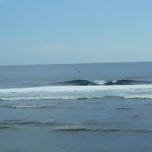 昨日のバリ島シークレットポイントの波・サーフィン動画 / ケリースレーターも