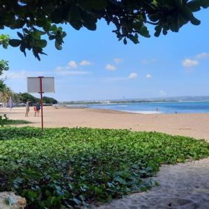 今日はビーチでサーフィン。まだまだパラソル少な目で淋しいビーチです。