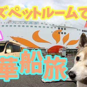 【わんこと女子の船旅】ウィズペットルームで快適に過ごす♪さんふらわあの旅 4K〜Japanese boat trip 「sunflower」to go with dog〜
