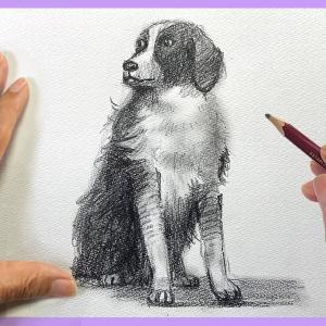 【 プロ直伝 】鉛筆1本でかんたん!可愛い犬の描き方 / 楽しくお絵かき #一緒にやってみよう