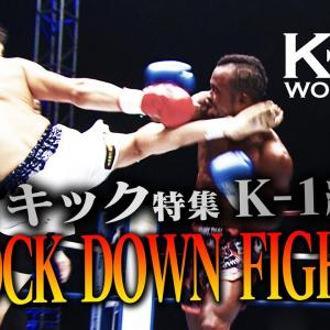 【OFFICIAL】K-1 WORLD GP JAPAN「KNOCK DOWN FIGHT」ハイキック特集