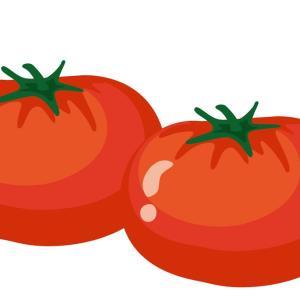 夏こそトマト!食べる美白・日焼け止め効果♪