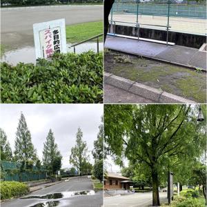 上平公園に行ってみました。