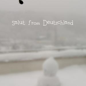豪雪ドイツ、あの子も雪宿り♪