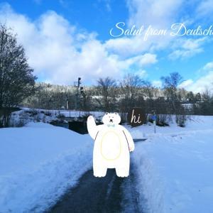 久々散歩、からの冬眠宣言!!