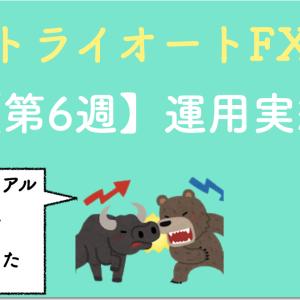【コツコツ稼ぐ】トライオートFXの設定と実績を公開(第6週目)