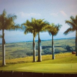 マカニゴルフクラブ  ハワイ島