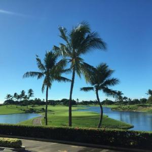 マカニゴルフクラブ・ハワイ島