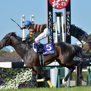 大阪杯は今日がお誕生日の最下位人気馬が大波乱を起こします。