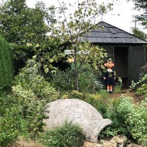 「花菜ガーデン/ペコちゃんがやってくる」行ってきました!