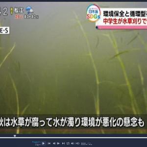 天神川水草刈りの水中撮影をさせていただきました。